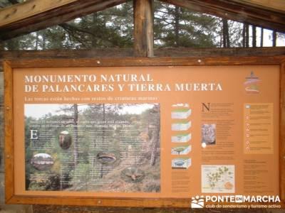 Monumento Natural de Palancares y Tierra Muerta; rutas para andar por madrid